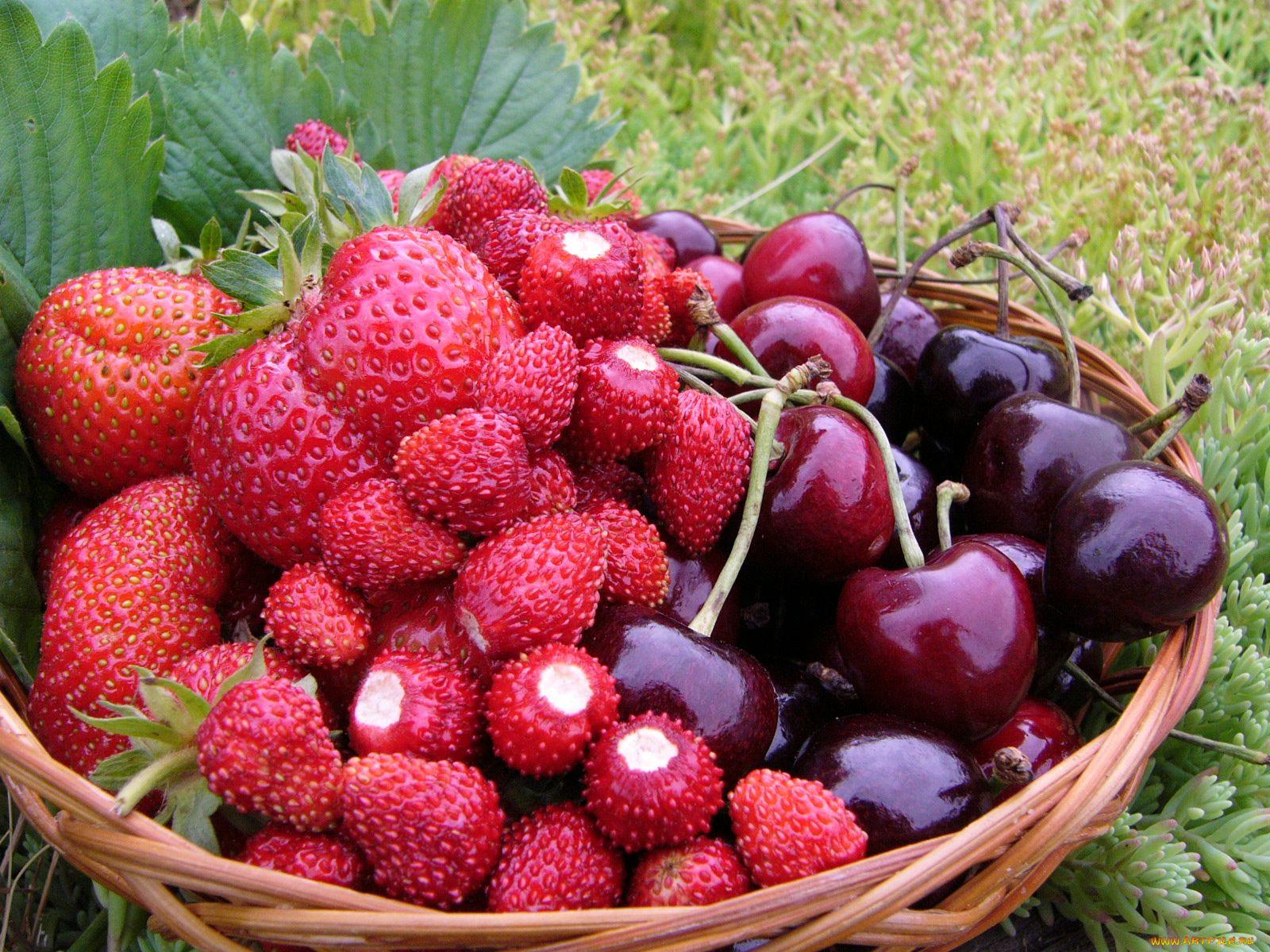 картинки июньские ягоды недавно все